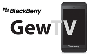 Blackberry-Repair-Guelph